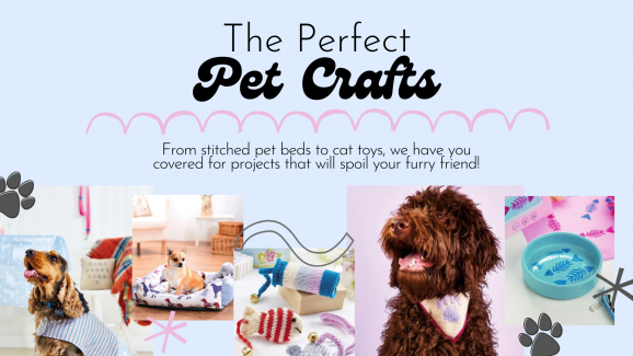 The Perfect Pet Crafts to Spoil Your Furry Friend