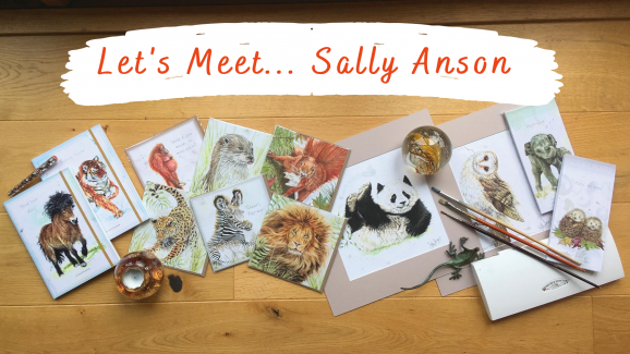 Let's Meet… Sally Anson