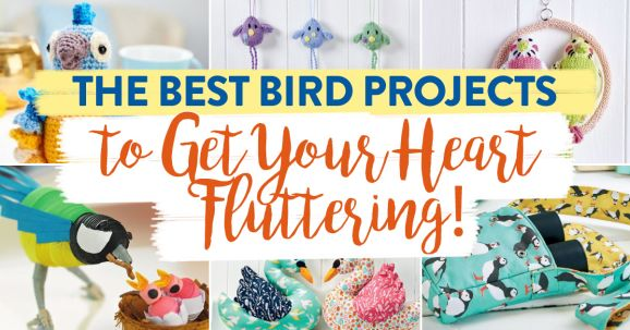 The Best Bird Projects to Get Your Heart Fluttering!