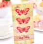 Two Bonus Cards With Your 3D Butterfly Card Kit