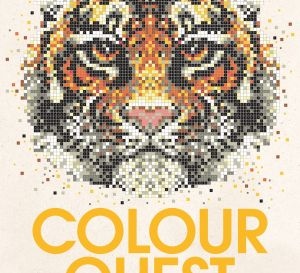 Colour Quest Downloads