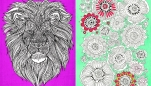 6 Colour Therapy Colouring-In Pages