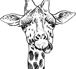 Safari Animals To Colour In