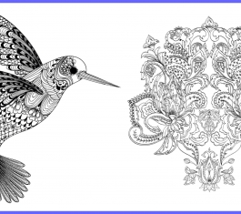 Hummingbird & Flower Art Therapy Designs