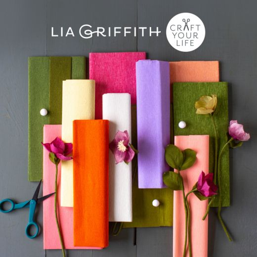 Win One of Three Lia Griffith Memberships & Craft Bundles