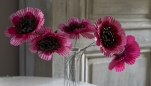 Paper Poppies Template