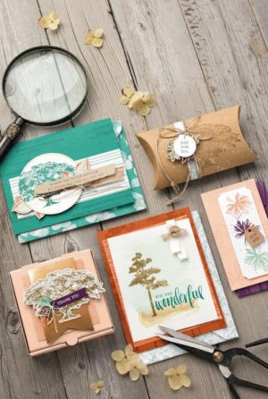 4 Stampin' Up Bundles