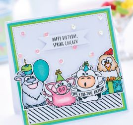 Funny Kids' Birthday Cards