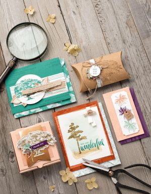 Win One Of Four Stampin' Up! Bundles